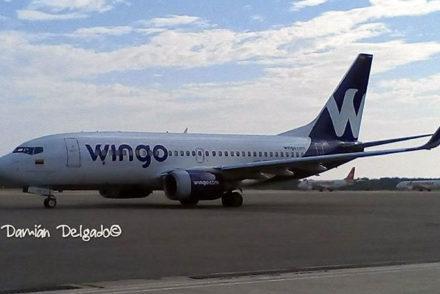feria wingo airlines